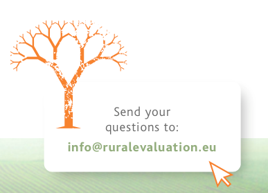 Email Us Your Queries