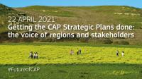 Getting the CAP Strategic Plans done: the voice of regions and stakeholders